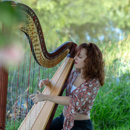 Bohemian Harping