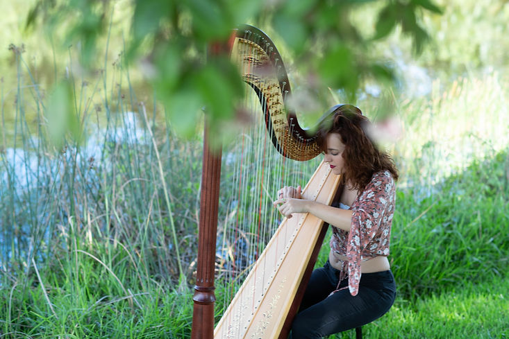 Harpist NatalieWagner performing by a lake and beautiful tree