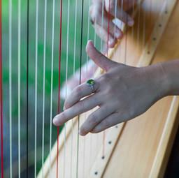 Harpy Hands