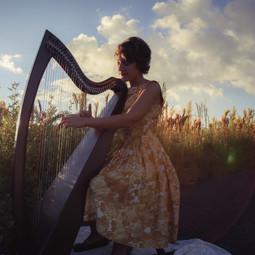 Sunset Harp
