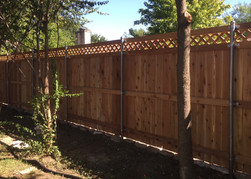 Vertical privacy fence with semi-private trellis top on steel posts made by Austin Brothers Fence Co.