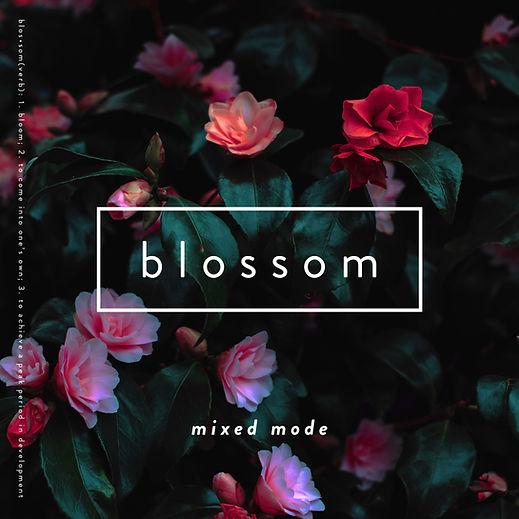 Blossom (Official Artwork) - 2019.jpg