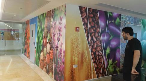 HP HQ cafeteria