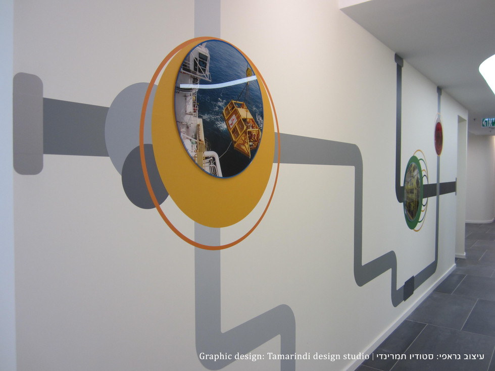 Wall graphics - vynil with perspex