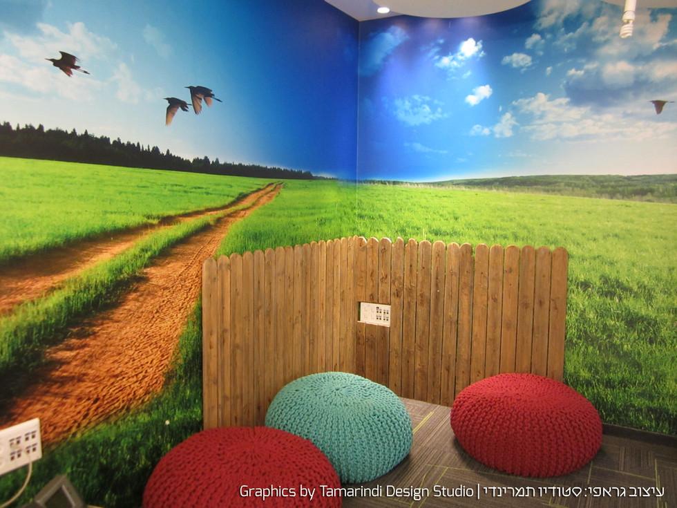 Wall graphics - recreation room