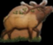 Elk Target.png