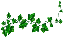 Ivy%2520Lead_edited_edited.png