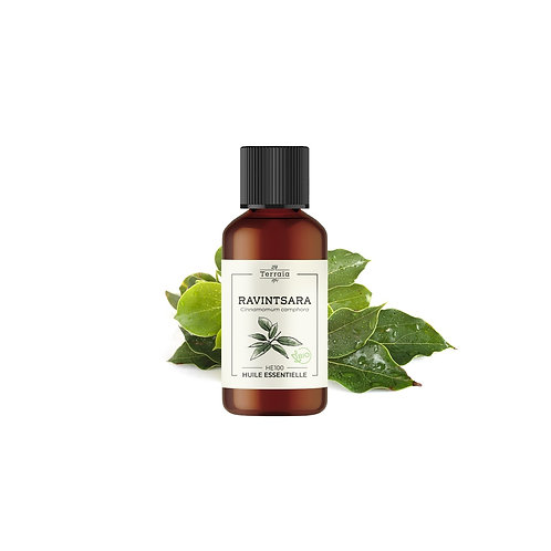 Huile essentielle Ravintsara Bio - 30 ml