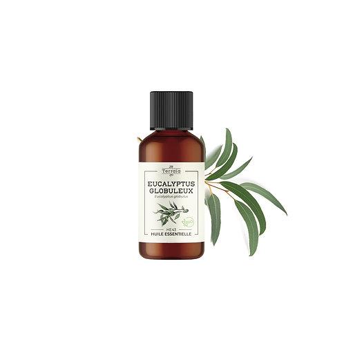 Huile essentielle Eucalyptus globuleux Bio - 30 ml