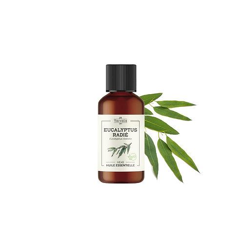 Huile essentielle Eucalyptus radié (radiata) Bio -30 ml