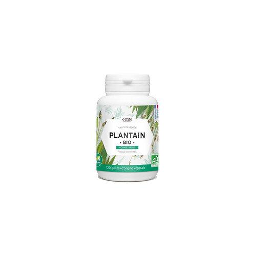 Plantain bio - 120 gélules végétales