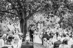 ibis-house-wedding-venue-02