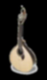 גיטרה פורטוגזית גיטארה פורטוגזה קואימברה