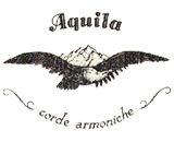 מיתרי Aquila