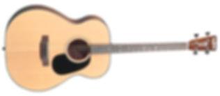 גיטרת טנור