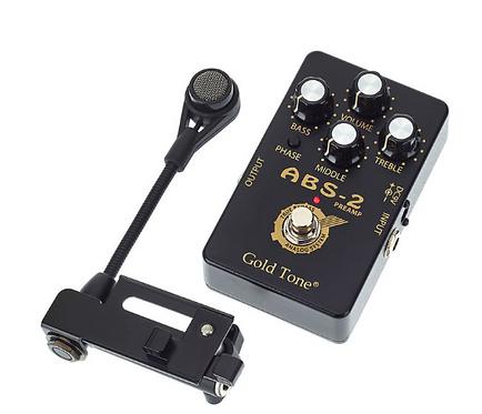 פיקאפ לבנג'ו- Gold Tone ABS