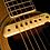 L.R.Baggs M1 פיקאפ לגיטרה אקוסטית