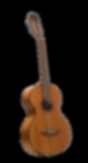 גיטרה רוסית