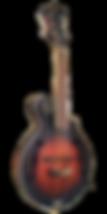 גיטרה מנדולינה