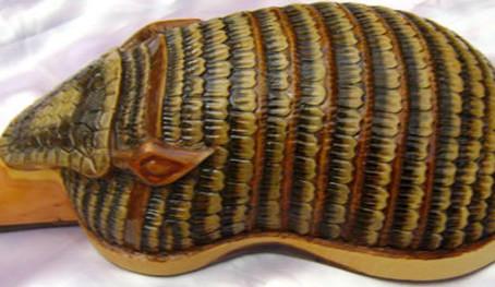 צ'רנגו - כלי הנגינה של הרי האנדים