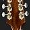Loar LH-280 Archtop גיטרה אקוסטית