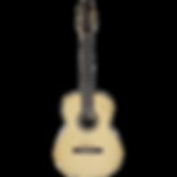 גיטרה 7 מיתרים