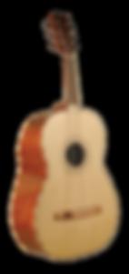 גיטרון