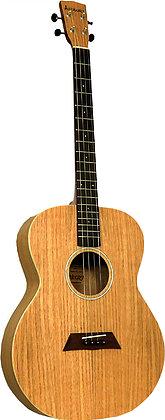 Ashbury AT-40 גיטרת טנור