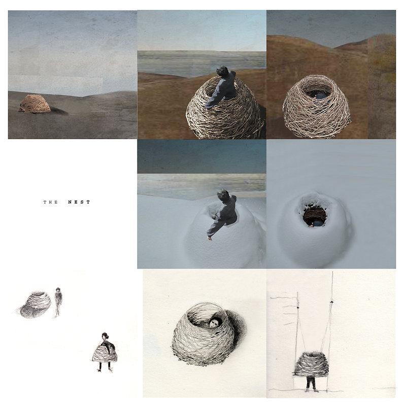 the nest-1.jpg