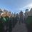 Thumbnail: Medieval Spawn