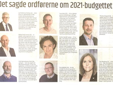 Vedtaget budget 2021 udtalelser