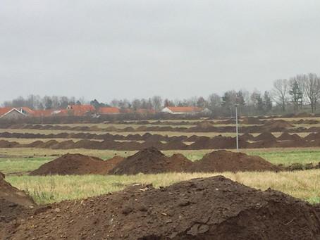 Arkæologiske udgravninger på  Degnejorden