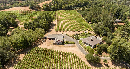 One Lane Bridge Vineyard West