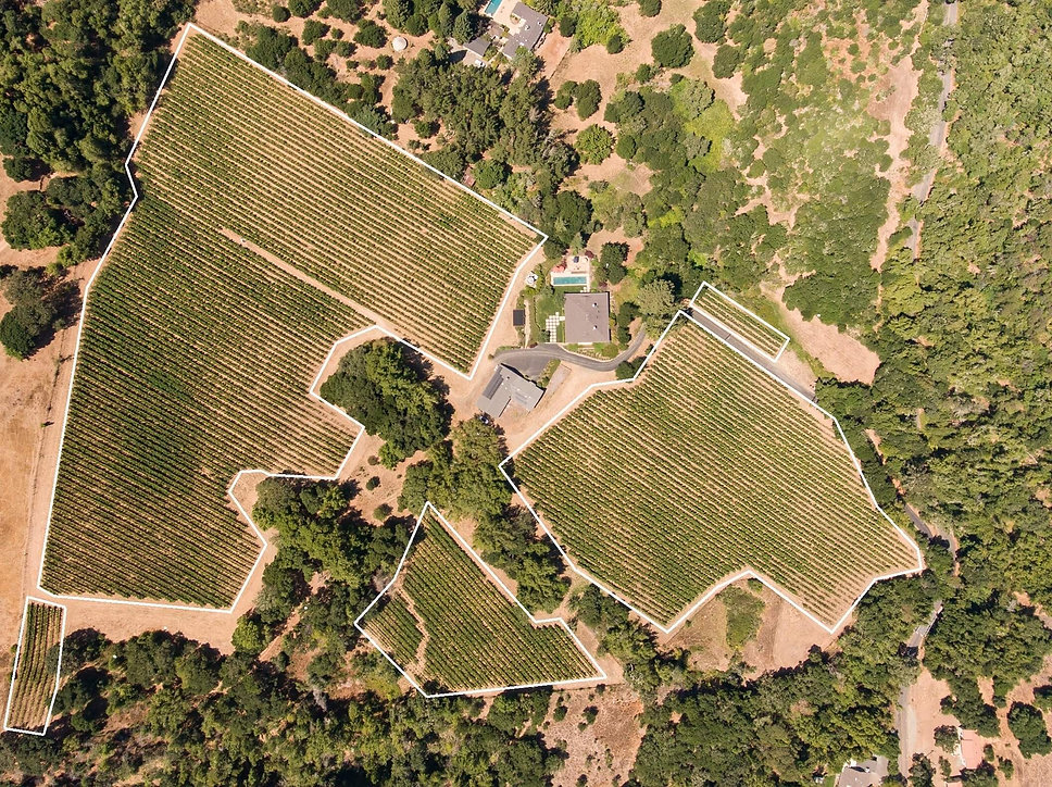 1511 Partrick Road Aerial - 0Vineyard2.j