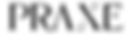 LogoMaisonPraxe-01.png