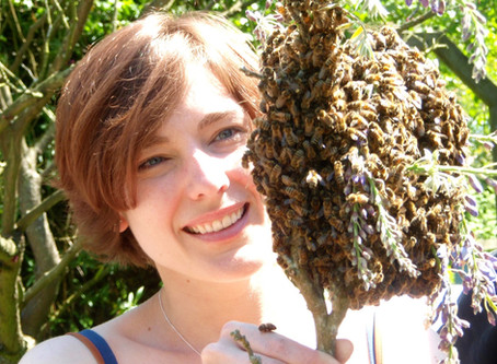 Beekeepers, Bees and the Bien