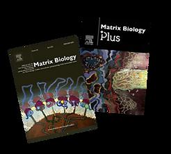 journals 2.png