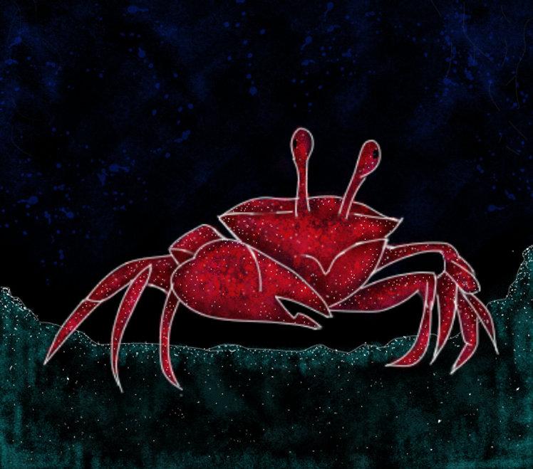 crab_003.jpg