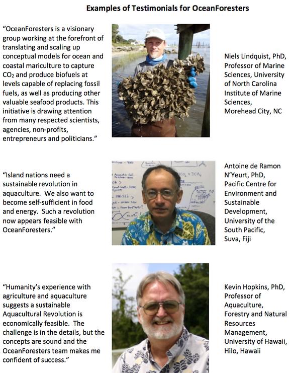 ExampleTestimonialsReOceanForesters-Apr9