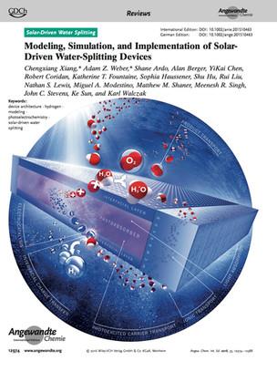 Angewandte Chemie Cover