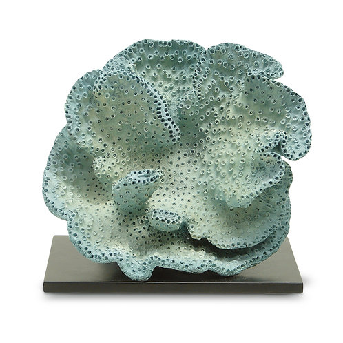 Banks Coral Sculpture
