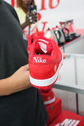 Girls Don't Cry Nike Dunk SB debut IV