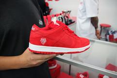 Girls Don't Cry Nike Dunk SB debut II