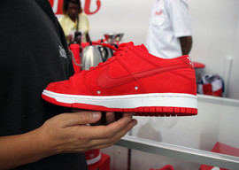 Girls Don't Cry Nike sb debut III