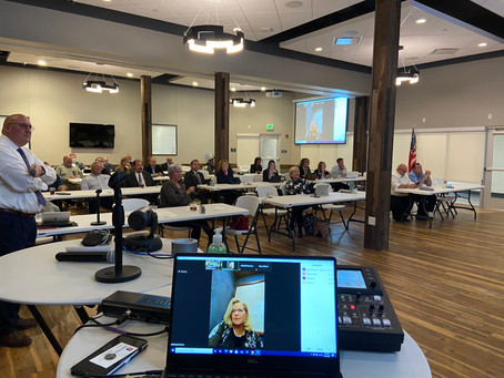 Local Businesses Connect Virtually with National Delegation
