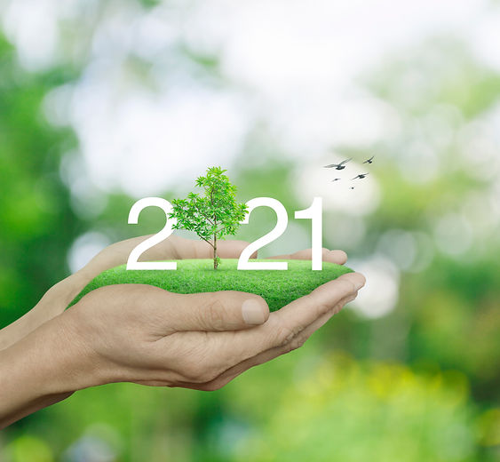 2021 white text with growing tree on gre