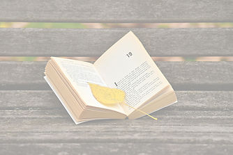 leaf and book on bench