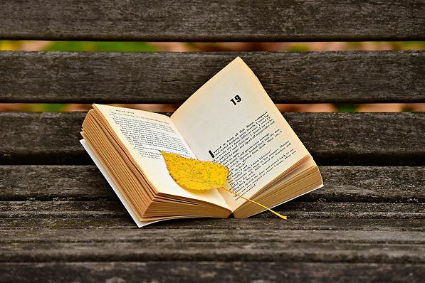 book-3773783_1920.jpg