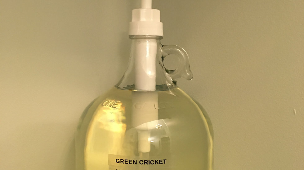 Hand & Body Wash by The Green Cricket Lifestyle
