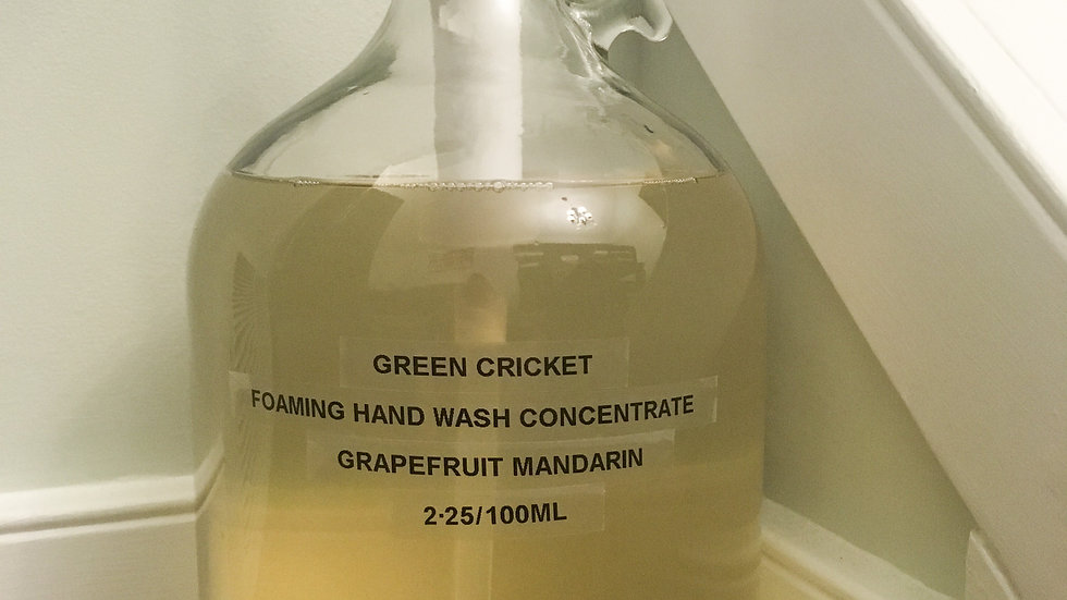 Foaming Hand Wash Concentrate (Grapefruit Mandarin) By Green Cricket Lifestyle